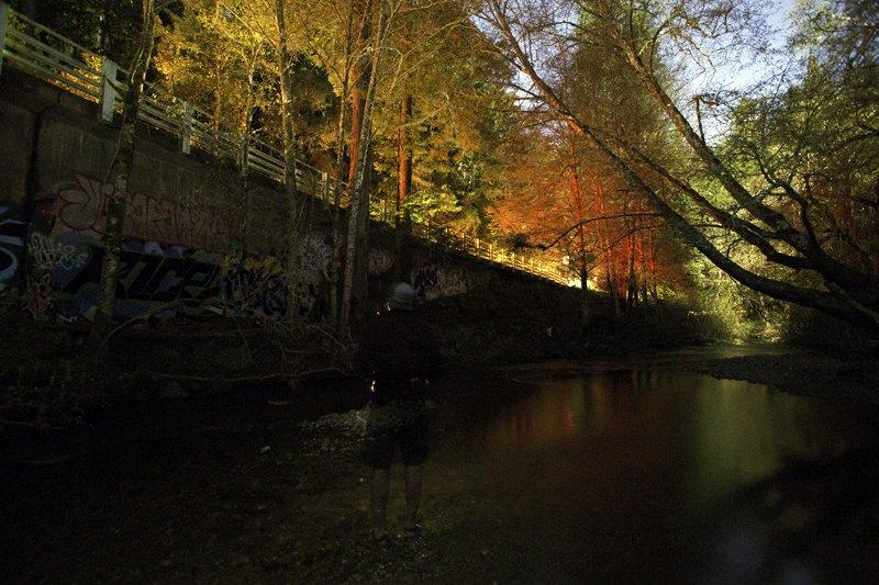 San Geronimo Creek